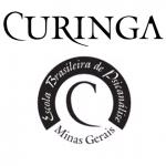 publicacoes_curinga